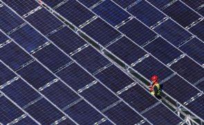 Produção de renováveis assegurou até maio 3/4 do consumo de eletricidade - REN