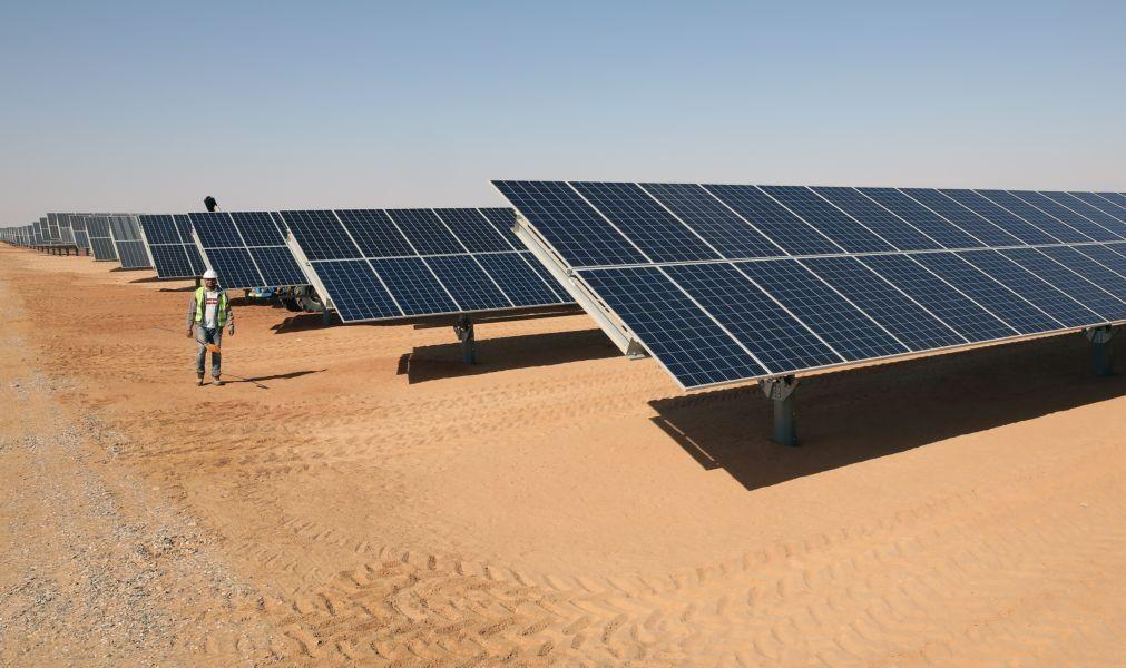 Governo anuncia 10 ME para instalação de painéis fotovoltaicos em empresas agrícolas