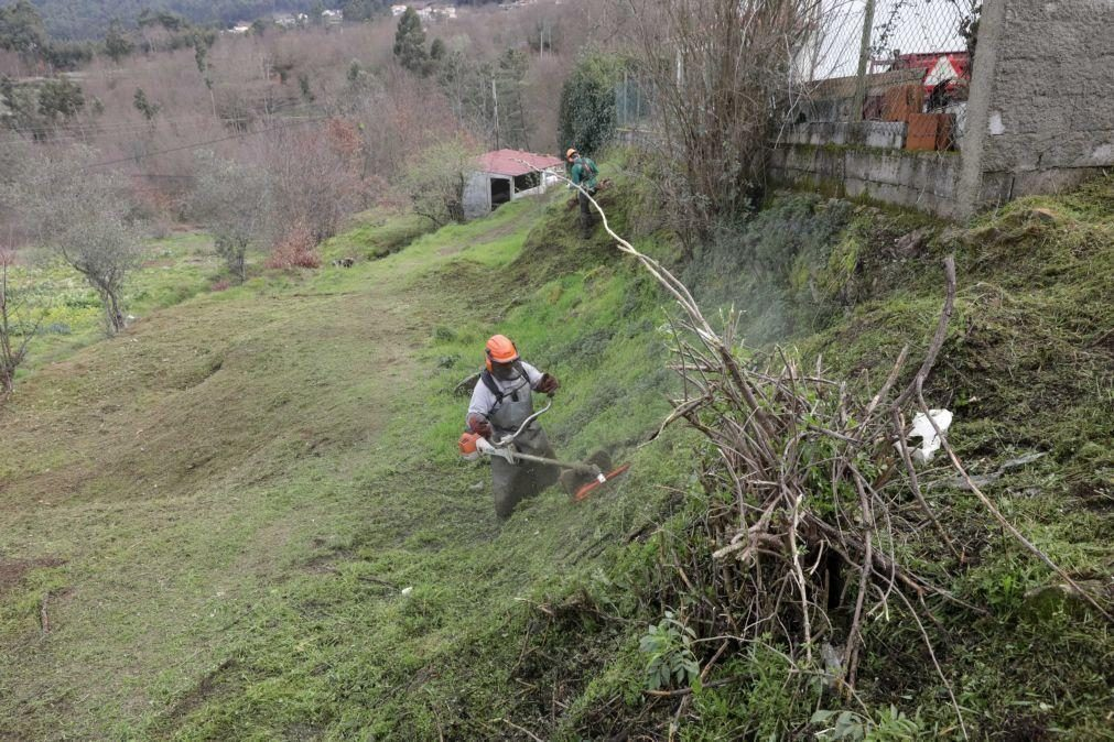 GNR comunicou aos municípios 14.477 situações de falta de limpeza de terrenos
