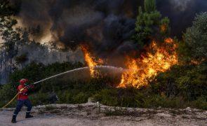 Incêndio em Celorico de Basto dominado depois das 20:00