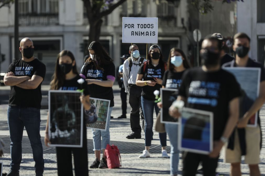 Cerca de cem pessoas participam em marcha para defender direitos dos animais