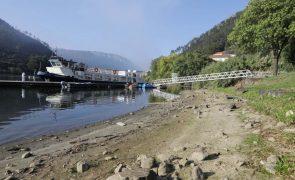 Baixos caudais no Tejo colocam produção agrícola em risco em Abrantes e Constância