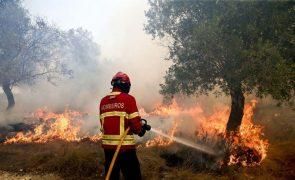 Fogo descontrolado na Sertã combatido por 8 meios aéreos e 170 bombeiros