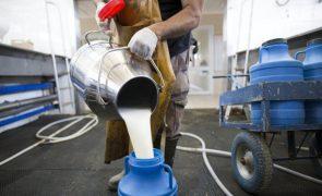 Produtores de leite exigem intervenção urgente do Governo no setor
