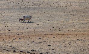 Sul de Portugal com aumento da área em seca meteorológica