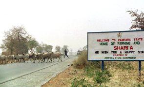 Ladrões de gado matam 53 pessoas na Nigéria
