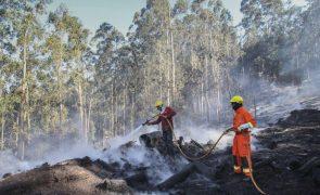 Plano Operacional de Combate a Incêndios da Madeira entra hoje em vigor