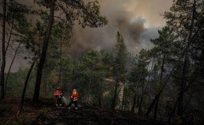 Mais de 50 concelhos de oito distritos em risco muito elevado de incêndio