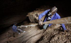 África do Sul: Polícia descobre 20 corpos de mineiros ilegais em mina abandonada