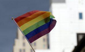 Condutor de carrinha atropela participantes em desfile gay nos EUA