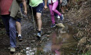 Coimbra Business School dá formação a líderes durante caminhada pela natureza