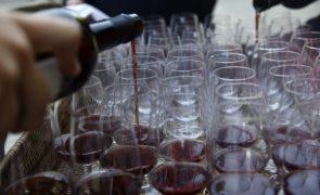 Ministério da Agricultura reforça apoio à promoção do setor vinícola em 4 ME