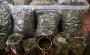 Consumo de drogas irá reduzir na Europa mas aumentar no resto do mundo