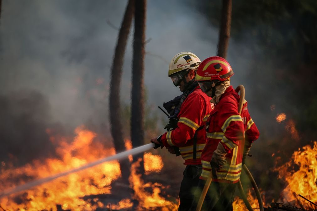 Incêndios: Mais de 100 bombeiros e três meios aéreos combatem fogo em Ponte de Sor