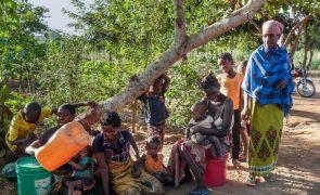 PAM distribui refeições diárias a mais de 25 mil crianças no norte de Moçambique