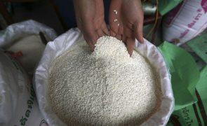 Moçambique/Ataques: Grupo japonês Mitsui entrega arroz para deslocados