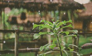 Previsão do tempo aponta para chuva fraca no Norte e sol no Sul