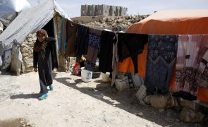 Arábia Saudita dá 50 milhões de euros à ONU para apoiar o Iémen