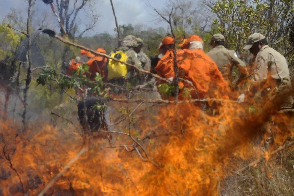 Amazónia brasileira regista maior número de incêndios desde 2007