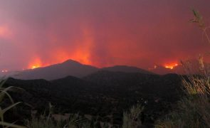Chipre pede ajuda à UE e Israel para combater incêndio no sul do país