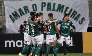 Palmeiras de Abel Ferreira vence Recife e 'encosta' no líder do Brasileirão