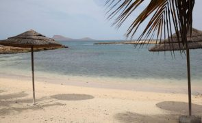 Pescadores de vila cabo-verdiana querem levar turistas a mergulhar com tartarugas
