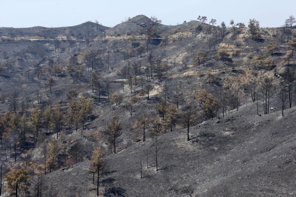 Incêndio que devastou área florestal no Chipre está sob controlo
