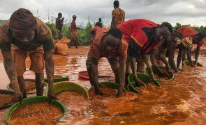 Tribunal manda prender 42 garimpeiros que ameaçavam Parque da Gorongosa em Moçambique