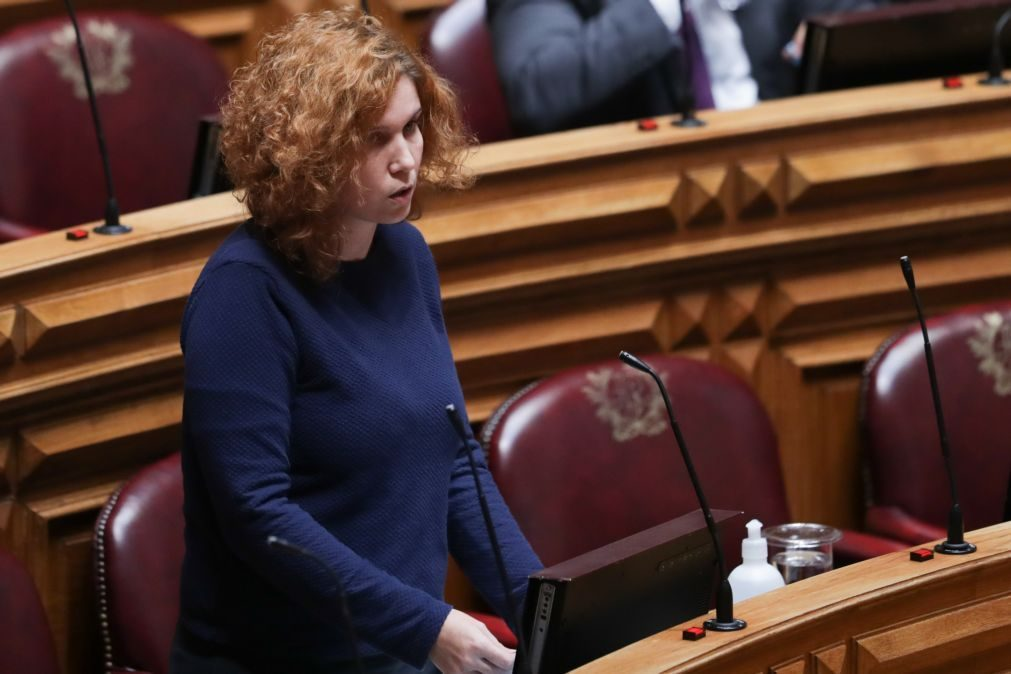 PAN vai propor que parlamento regulamente autodeterminação da identidade de género