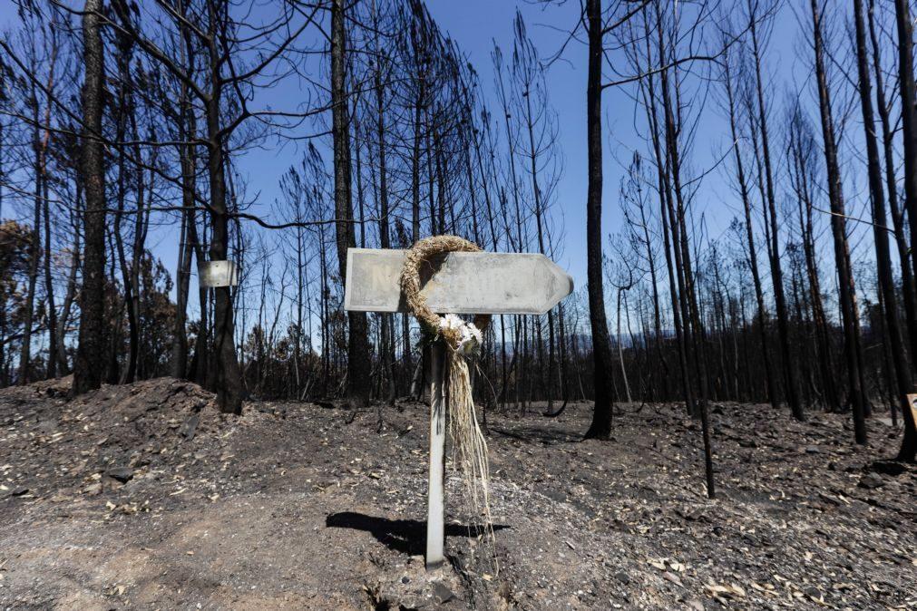 Incêndios: Informação sobre fundo de apoio às áreas afetadas disponível em 'site