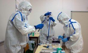 Covid-19: Em 24 horas mais 5 mortos e 3.641 infetados em Portugal