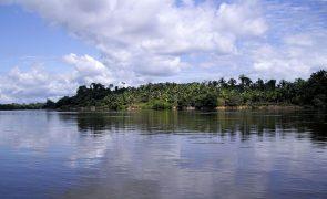 Governadores do Brasil precisam conter destruição da Amazónia para obter ajuda internacional - ONG