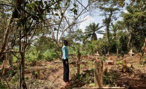 Covid-19: África ultrapassa 150 mil mortes