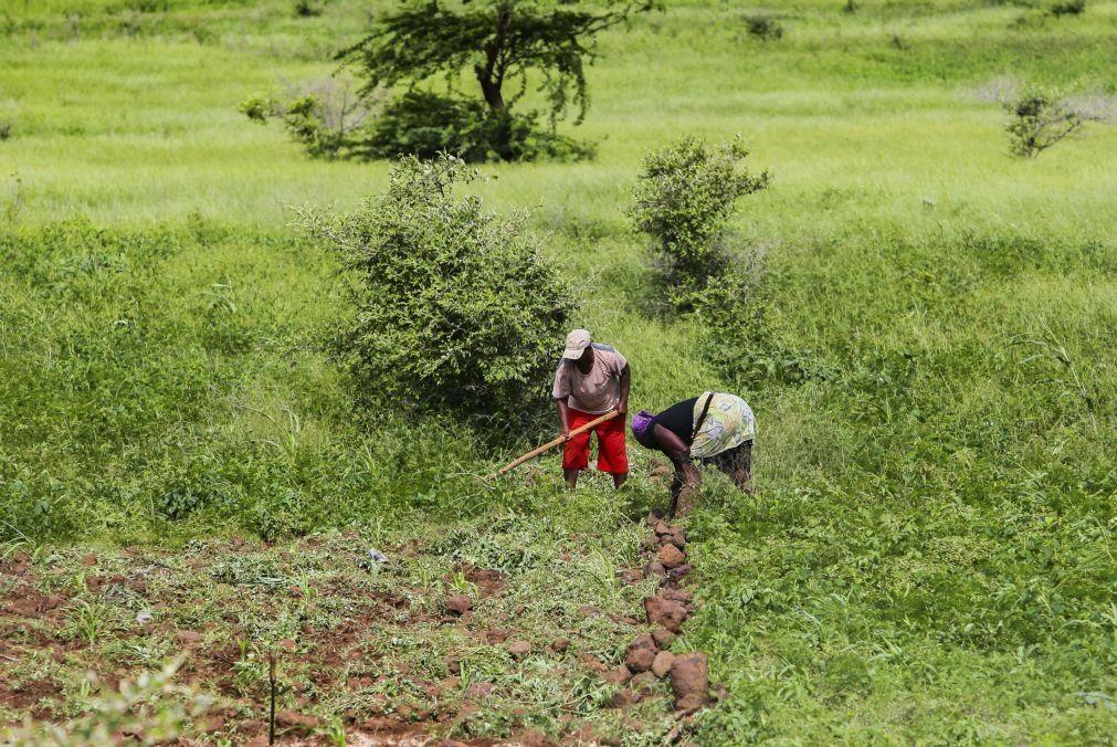 Cabo Verde prevê falta de chuvas e anuncia medidas de apoio às populações