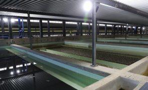 AEPSA denuncia Estado à CE por violação da concorrência no setor da água