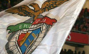 Benfica vai ter eleições antecipadas ainda antes do final do ano