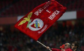 Cartão vermelho: Benfica Bem Maior quer venda de 25% do capital social da SAD suspensa