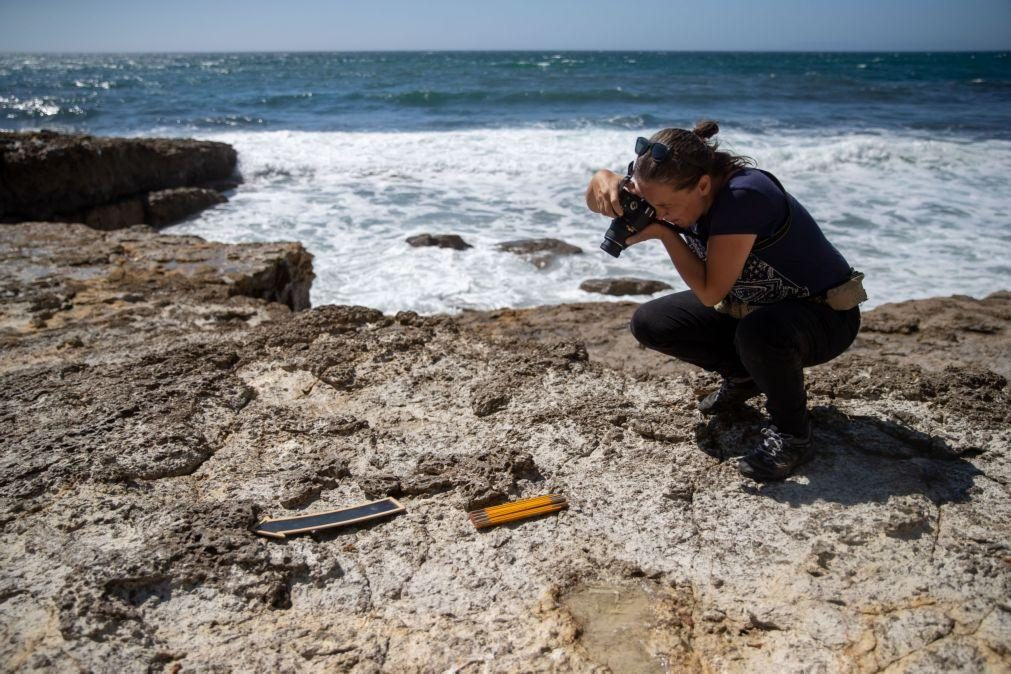 Investigador admite possibilidade de haver ovos de dinossauro no Cabo Espichel