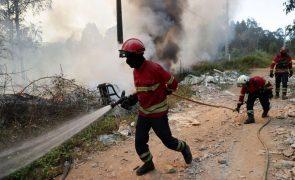 Mais de 180 operacionais combatem fogo em zona de mato em Loures
