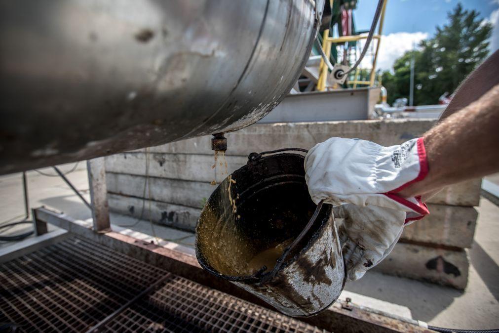 Produção petrolífera diária de Angola cresce para 1,115 milhões de barris em junho -- OPEP