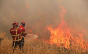 Incêndios: Fogo que começou em Monchique coloca habitações em risco em Portimão