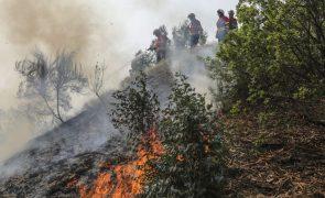 Incêndios: Fogo no Algarve obriga a retirar cerca de 30 pessoas e põe em perigo localidades