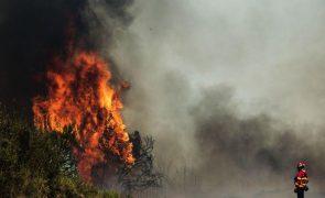 Incêndio: Fogo no Algarve tem duas frentes e autoridades esperam dominá-lo de madrugada