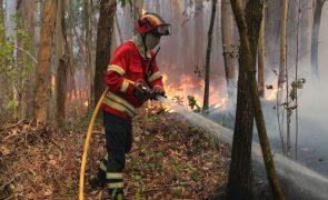 Incêndio em Monchique dado como dominado às 07:15
