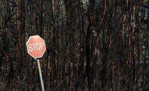 Em Portimão e Monchique contam-se prejuízos depois de 2.000 hectares ardidos