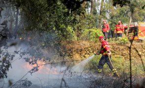 Mais de uma centena de bombeiros combatem chamasem Mogadouro