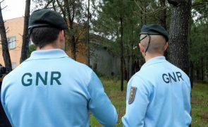 GNR desmantela matadouro ilegal de animais em Loures