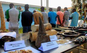 Angola apresenta projeto no valor de 3,4 milhões de euros para combater caça furtiva