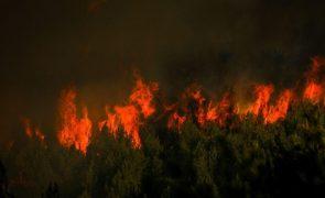 Incêndios: Cerca de 40 concelhos no interior Norte e Centro e do Algarve em risco máximo