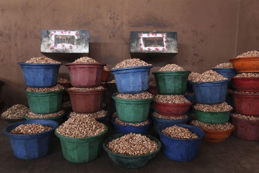 Moçambique lança inquérito ao setor do caju